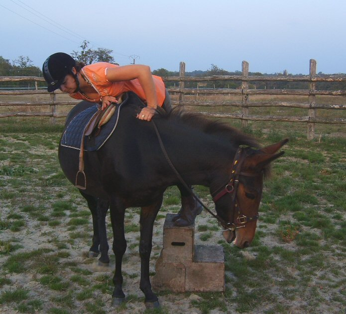 Accepting some weight in the saddle...